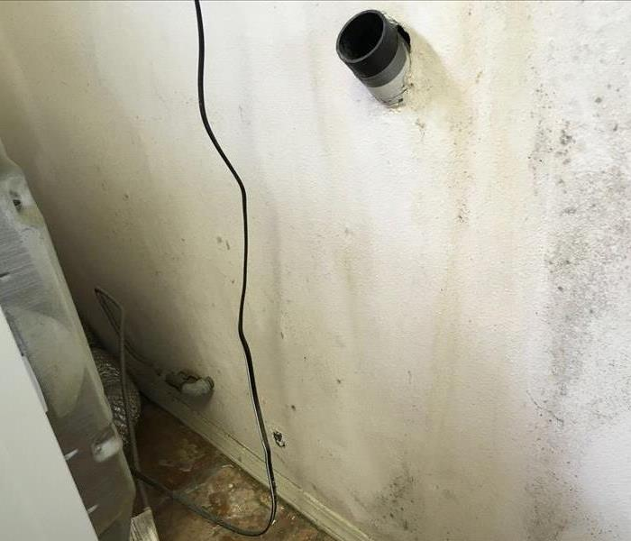 Mold Remediation in Santa Maria, CA Before
