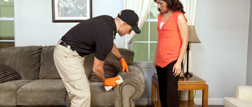 Santa Maria, CA carpet upholstery cleaning
